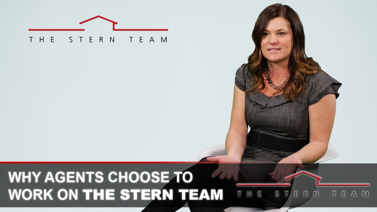 Why Agents Choose to Work on The Stern Team