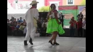 preview picture of video 'LA PRESUMIDA, XOCHIPITZAHUATL - 6º Encuentro de Huapango, Pachuca Hgo.'