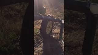 Redneck Pecan Watering System