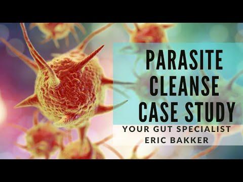 Paraziták emberben galandféreg