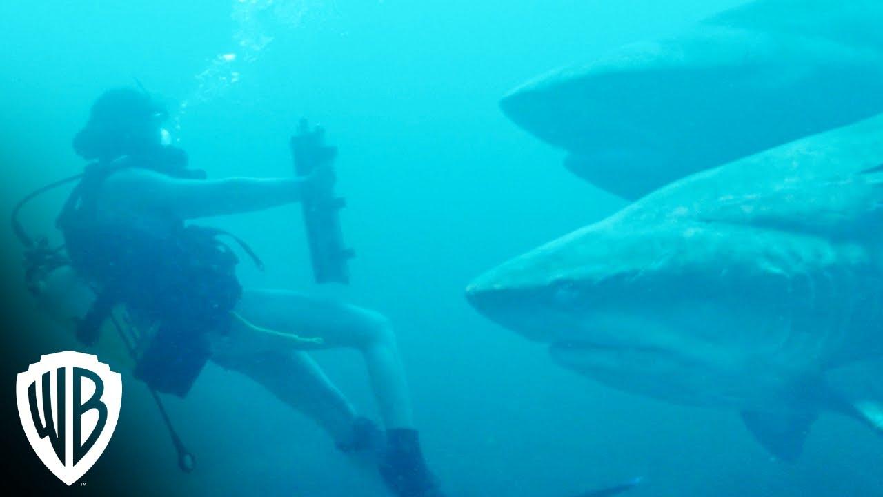Дебютный трейлер фильма «Глубокое синее море 3»