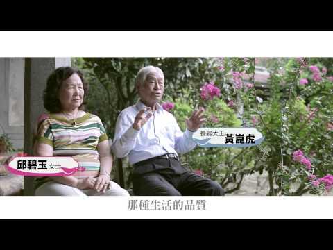 2014臺南愛情城市影片