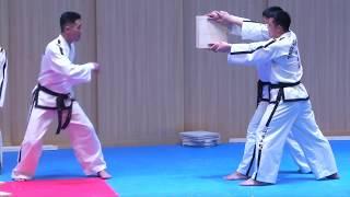 Совместное выступление мастеров тхэквондо из Северной и Южной Кореи