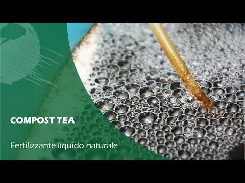 Acquaponica: COME FARE il COMPOST TEA