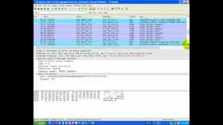 Wireshark Packet Capture on Internet Control Message Protocol (ICMP) - Ping Command.mp4
