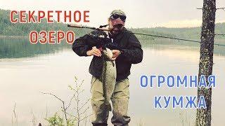 Рыбалка в кольском полуострове лучшая ловозеро