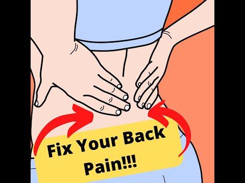 Best Low Back Pain Exercises!!!