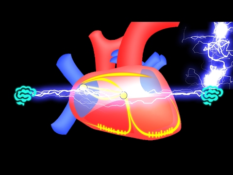 Un algorithme de mesure de la pression artérielle capture décran