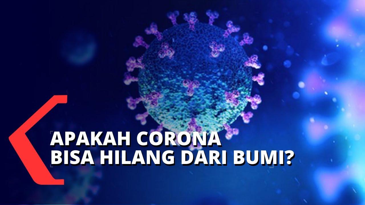 Update Status COVID-19 Terkini di Indonesia