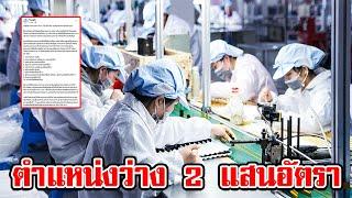 กระทรวงแรงงาน เตรียมตำแหน่งงานว่าง 200,000 อัตรา ช่วยคนไทย