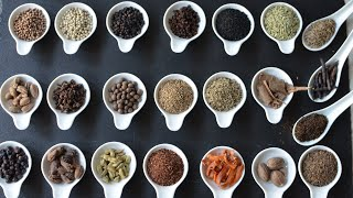 A BEGINNERS GUIDE TO USING SPICES EP1