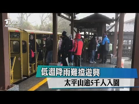 低溫降雨難擋遊興 太平山逾5千人入園