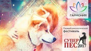 Открытие дрессировочной площадки для собак в ЖР «Гармония». Михайловск. Ставропольский край