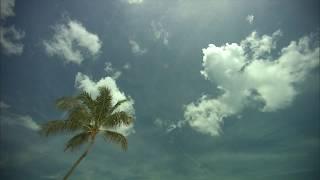 Werkt zonnebrandcrème kankerverwekkend?