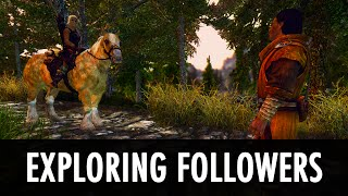Skyrim Mod: Follower Goes On A Trip