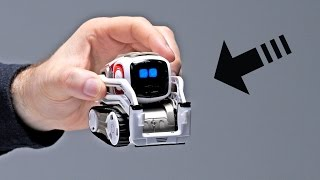Will This Be Your First Robot?