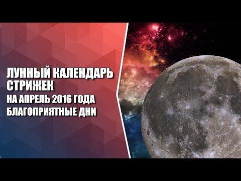 Лунный календарь стрижек на апрель 2016 года. Благоприятные дни