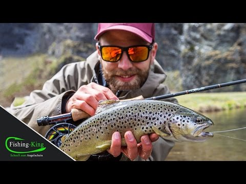 Fliegenfischen mit dem Streamer | Anfänger-Tutorial |+ Livebiss | www.Fishing-King.de