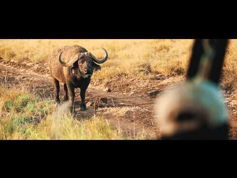 Lewa Safari Camp has a stunning location in the UNESCO World Heritage site of Lewa Conservancy.