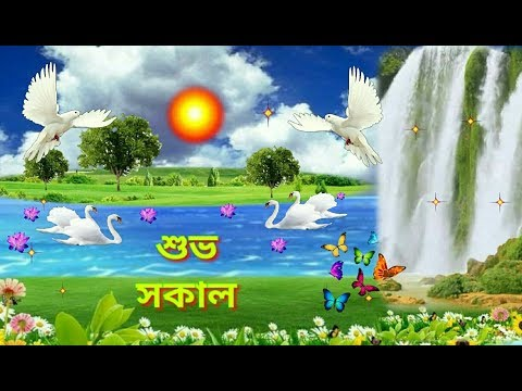 Latest Hd Good Morning Image In Bengali Download Hd Greetings Images