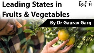Leading state in Fruits & Vegetables production in India - Official data by Ministry of Agriculture