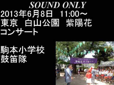 2013年6月8日 第29回 文京あじさいまつり  紫陽花コンサート 駒本小学校鼓笛隊