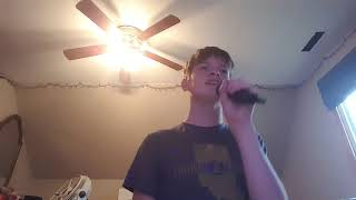 Taylor Swift - Call It What You Want - Cover By Hayden Prage