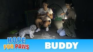Hope For Paws fans joined me on a late night rescue to save a scared homeless maltipoo.