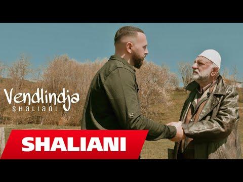 Shaliani - Vendlindja