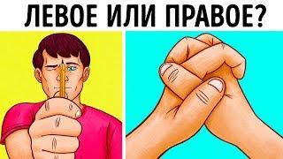 Тест: Узнайте, Какое Полушарие Мозга Управляет Вами
