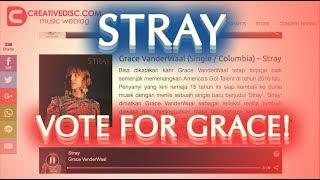 VOTE FOR GRACE VANDERWAAL'S STRAY . . NOW!