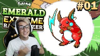 pokemon extreme randomizer nds rom - मुफ्त ऑनलाइन