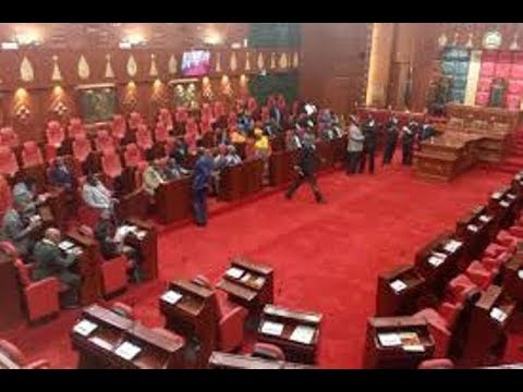 Drama at Nairobi County Assembly as MCA rolled on the floor of the house