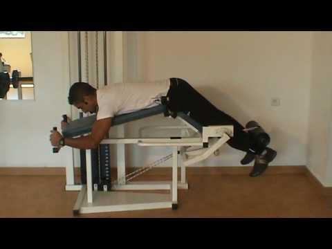 Lexercice sur la barre fixe pour tous les groupes des muscles
