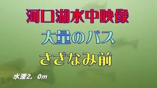 河口湖 水中ドローン・さざなみ前 Go!Go!NBC!