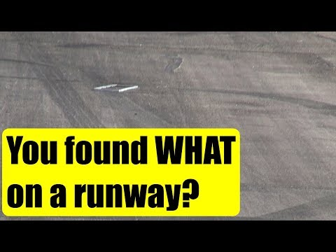 look-what-i-found-on-the-tokoroa-airfield-runway-nzto