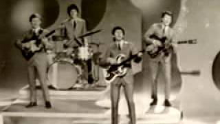 The Searchers - Love Potion No. 9