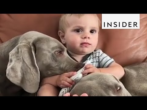Benefits Of Kids Growing Up With Pets