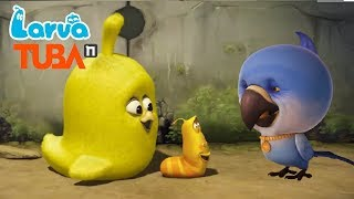 Larva Terbaru New Season  | Episodes Super Liquid - Nightmare - Chick 1  | Larva 2018 Full Movie
