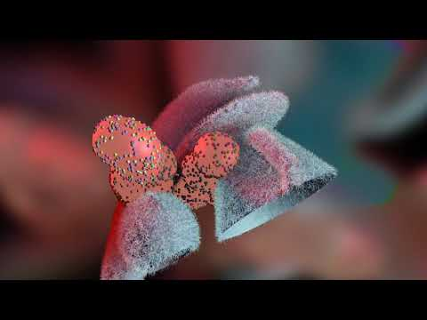 Platyhelminthes laposférgek táplálása