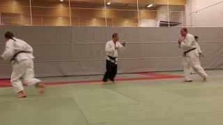 Hokutoryu Jujutsu Training Clips - Randori
