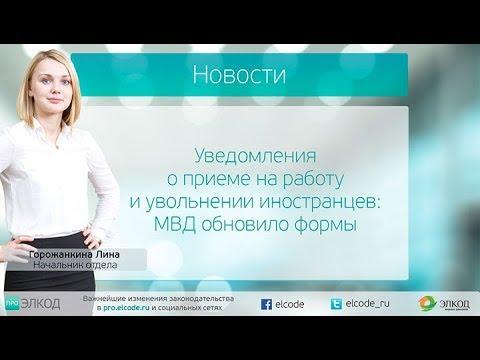Уведомления о приеме на работу и увольнении иностранцев: МВД обновило формы