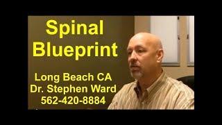 Spinal Blueprint | Long Beach | 562-420-8884 | Psychogenetics