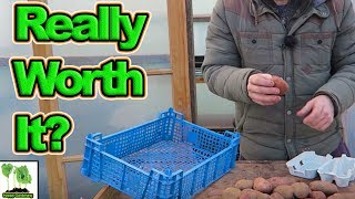 Is Chitting Potatoes Really Worth It?