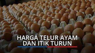 Harga Kebutuhan Pokok di Padang Jumat (26/2/2021), Harga Telur Ayam dan Itik Turun