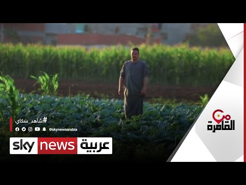العرب اليوم - مبادرة