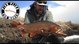 Five Flies for March 2019 - Fly Fishing the Dream Stream