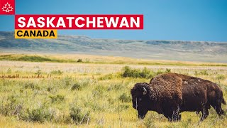 Road to 150: Best Things To Do In Saskatchewan