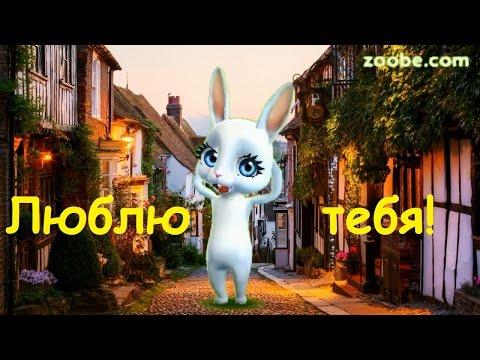 Zoobe Зайка В день влюбленных даже улицы целуются!