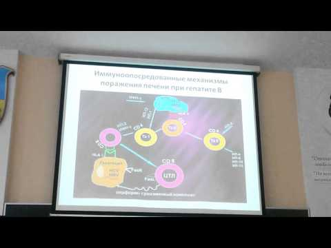 Профилактика и лечения печени